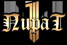 1Пират — 'Бесплатная' RPG онлайн игра